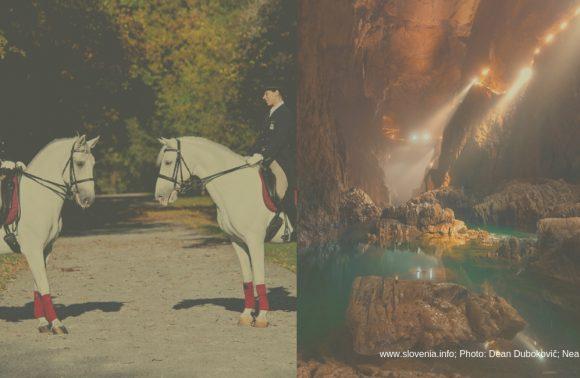 Lipica & Škocjan Caves
